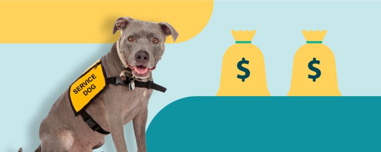 Service dog loans image dog and bag of money